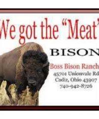 Boss Bison Ranch
